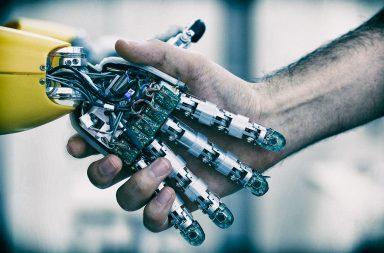 In sala operatoria il rene è espiantato con il robot
