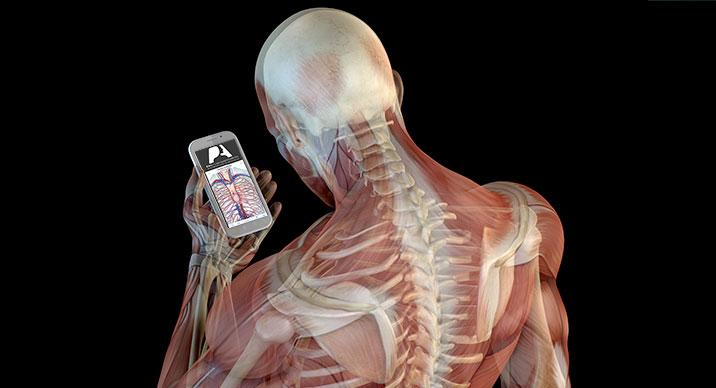 Pocket Anatomy: un'app per navigare nel corpo umano